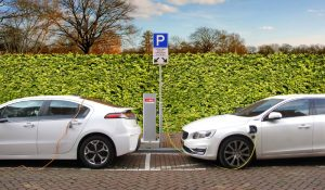 Zero-emission Vehicles: Personal and Corporate Incentives